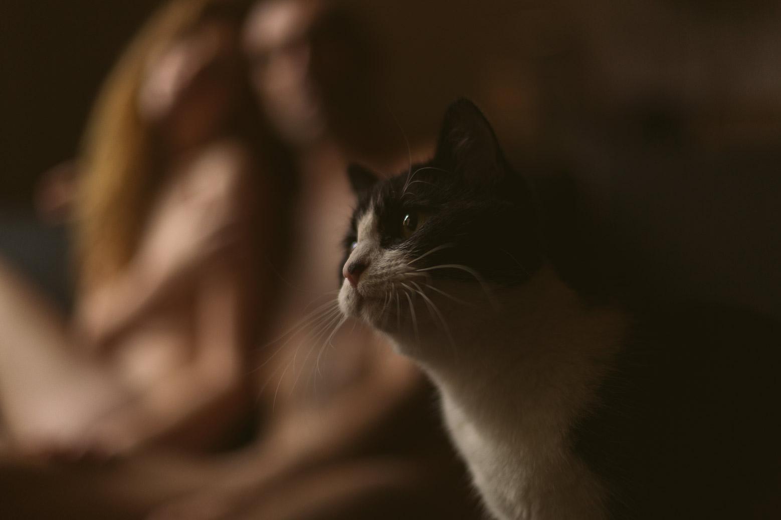 Séance photo intime en couple à Lyon avec chat