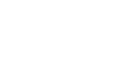 Blueberry Corner par David. Photographe de boudoir et photo glamour et de grossesse à Lyon Logo